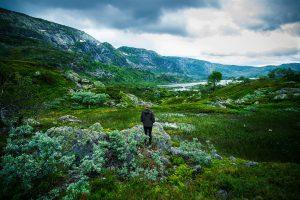 Natur Norwegens