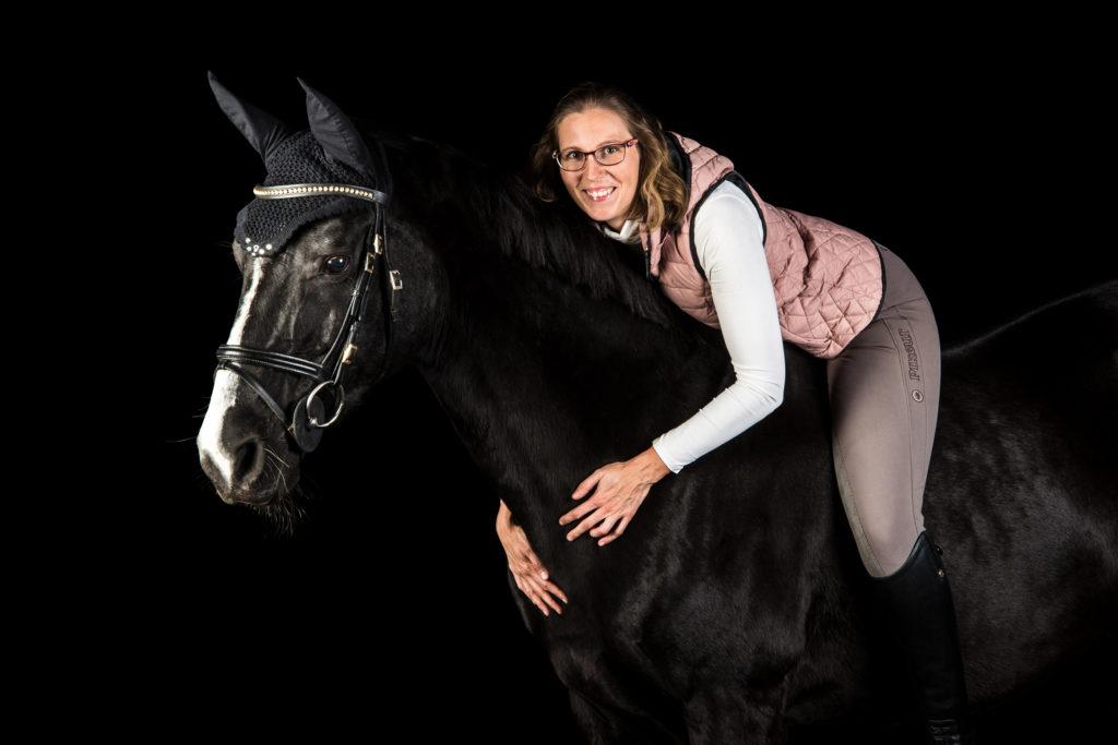 Pferd im Studio